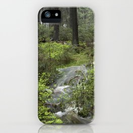 Mountains, forest, water. iPhone Case