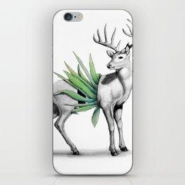 Whitetail Buck iPhone Skin