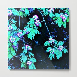 Mimosa Flowers over Water Metal Print
