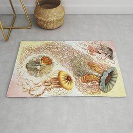 SEA CREATURES COLLAGE-Ernst Haeckel Rug