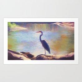 bro its bird Art Print