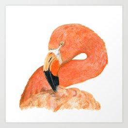 Breezy Flamingo by Teresa Thompson Art Print