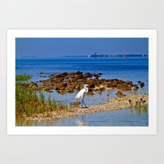 The Life Of An Egret Art Print