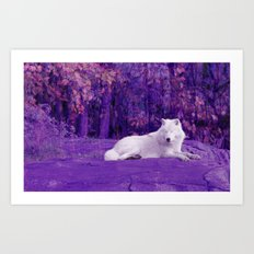 Dreaming Of Another World Art Print