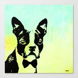 Boston Terrier in a Bow Tie Canvas Print