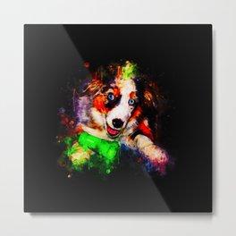 australian shepherd aussie dog puppy splatter watercolor Metal Print