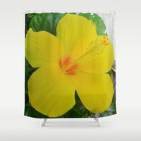 hibiscus Shower Curtains featuring Hibiscus  by GT6673