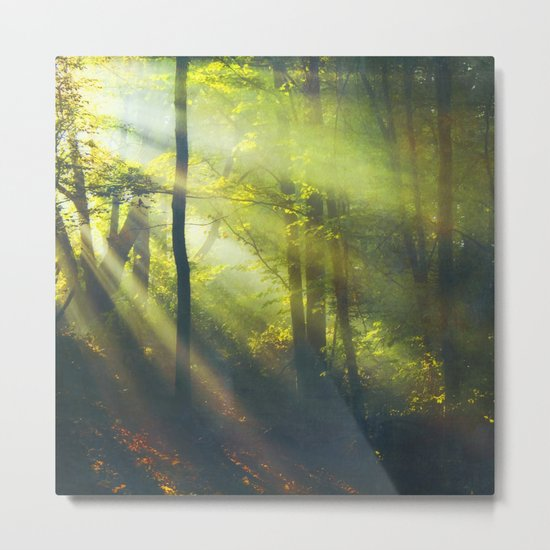 Rays - Morning Light in a Forest Metal Print
