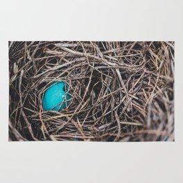 The Nest Rug