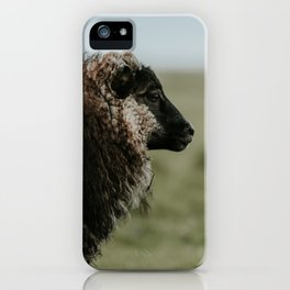 Sheeply in Love - Animal Photography from Iceland iPhone Case