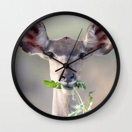 Kudu portrait Wall Clock