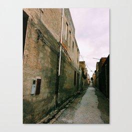Take The Path Less Followed Canvas Print