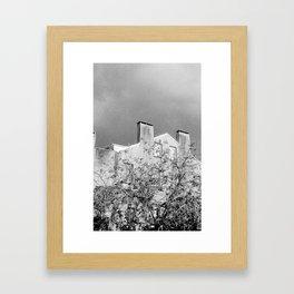 Savannah Shadows Framed Art Print
