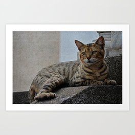 Tiles of a Cat Art Print