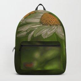 Elves fly Backpack