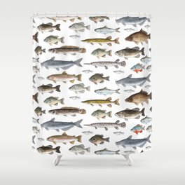 A Few Freshwater Fish Shower Curtain