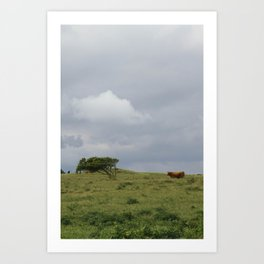 The cow says moo. Art Print