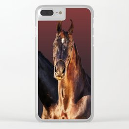 horse collection Clear iPhone Case