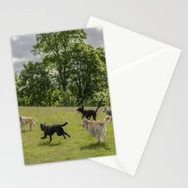 dog fun Stationery Cards