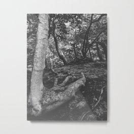 Tree Foot Metal Print