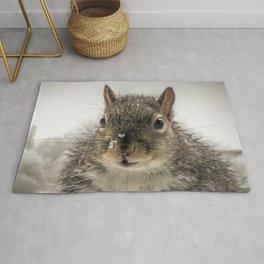 Adorable Praying Squirrel..Feed ME!! Rug