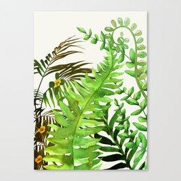Watercolor Plants Canvas Print