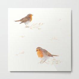 Lovely robins Metal Print