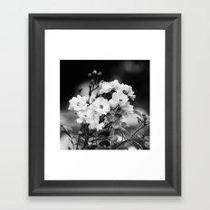 Untitled II. Framed Art Print