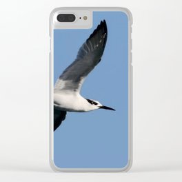Sandwich Tern In Flight Vector Clear iPhone Case