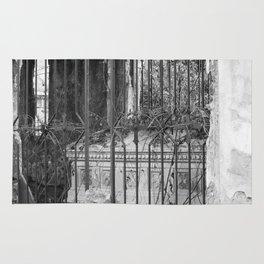 old gate & grave Rug
