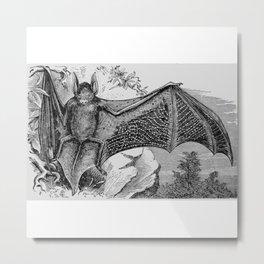 Vintage Bat Illustration Metal Print