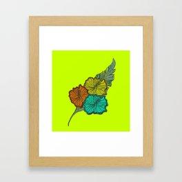 Australica Lime Pash Tropicana Framed Art Print