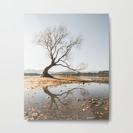 Lone Tree of Lake Wanaka Metal Print