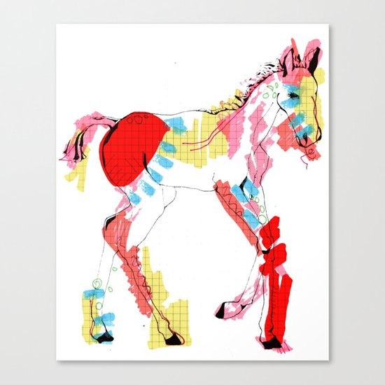 Baby horse colour Canvas Print