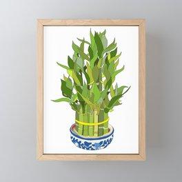 Lucky Bamboo in Porcelain Bowl Framed Mini Art Print