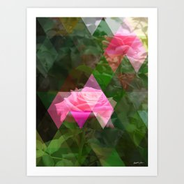 Pink Roses in Anzures 5 Art Triangles 1 Art Print