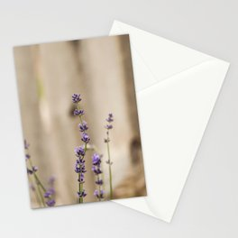 Lavender Buds and Blooms Stationery Cards