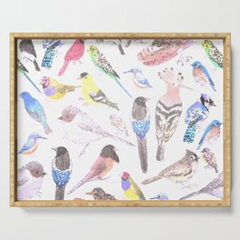 Birds of America- pets and wild birds in stained glass Serving Tray