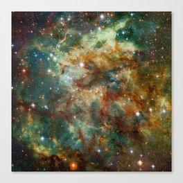 Part of the Tarantula Nebula Canvas Print