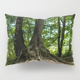 Growing together Pillow Sham