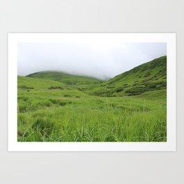 Alaskan Tundra Art Print