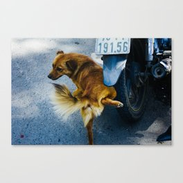 uncharted Canvas Print