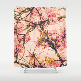 sweet sweet cherry blossoms Shower Curtain