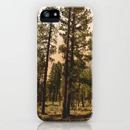 Klamath Fire One iPhone Case
