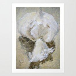 Garlic Still Life Painting of Food Vegetable Art Print
