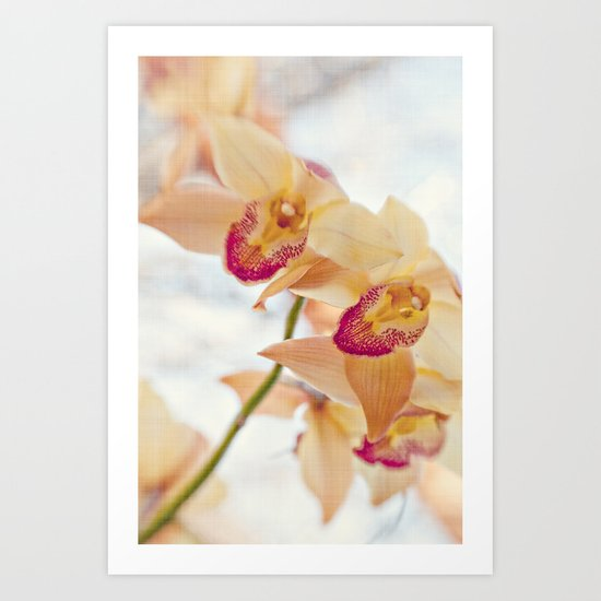 spring dream Art Print