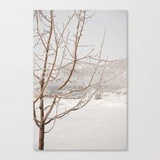 a long winter Canvas Print