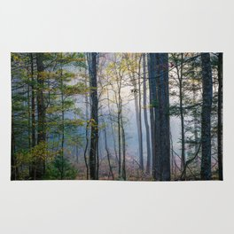 Mystic Forest - Early Morning Glow in Smoky Mountains Rug
