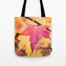 Autumn Still Tote Bag