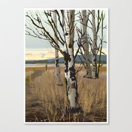 Conboy Lake Canvas Print